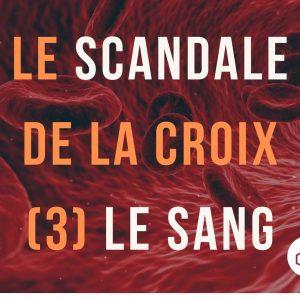 Le scandale de la croix (3) Dieu est-il sanguinaire ?